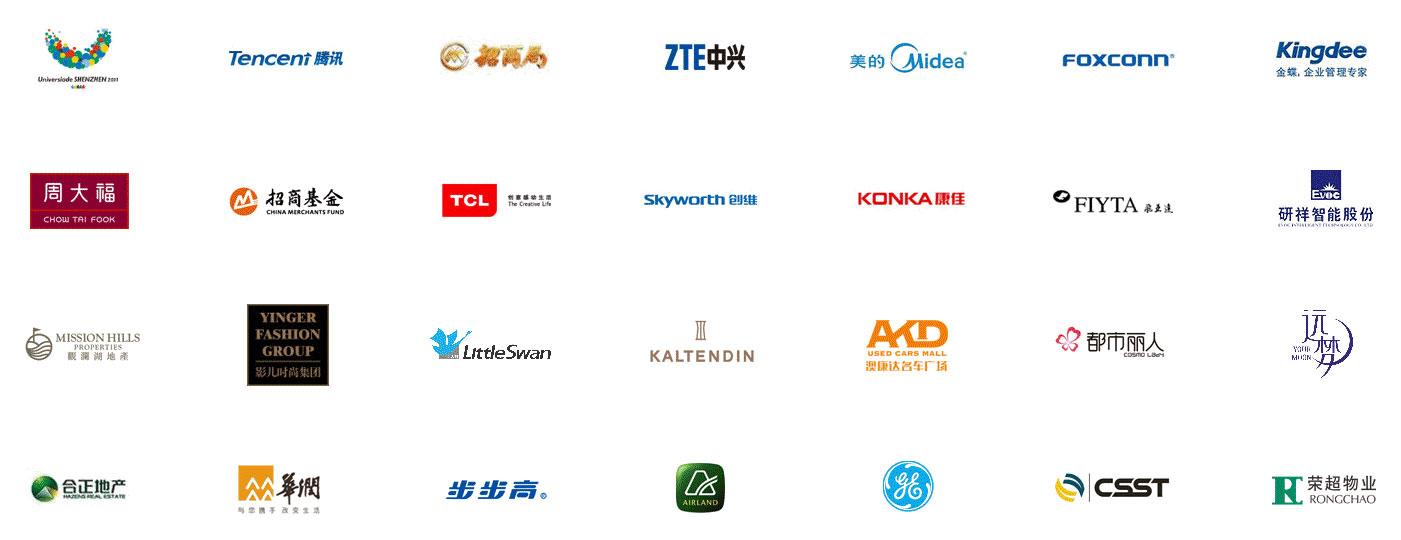 500強集團公司網站建設供應商